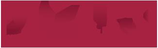 Logo Dazure B.V./ GoedIdee